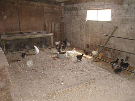 poulailler vue de l int 233 rieur avec nichoirs pour les poules pictures to pin on