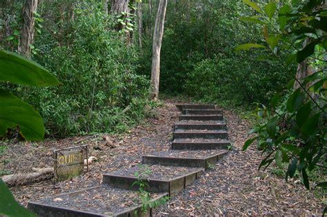 Waikamoi Nature Trail   Maui Guidebook