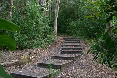 Trail Nature Waikamoi Quiet Guidebook