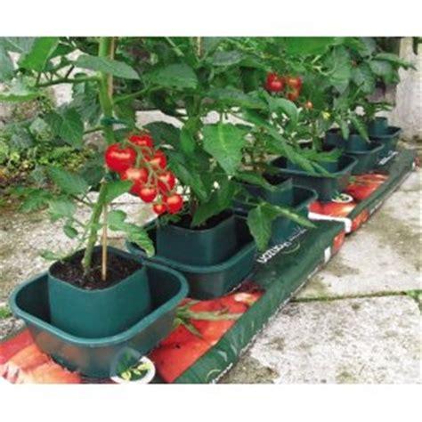 best tomato grow bags grow bag pots