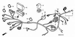 1999 Honda Recon 250 Wiring Diagram