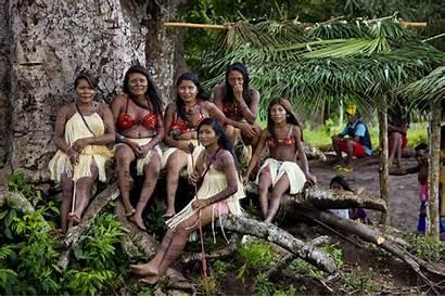 Human Indigenous Munduruku Mega Dams Tribe Peoples