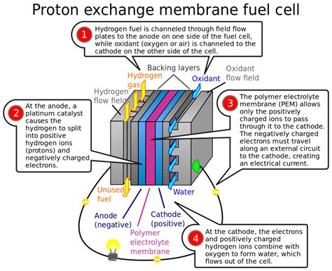 Proton Exchange Membrane Fuel Cell by Hydrogen Answers Call For Clean Ev S Ups Battery Center