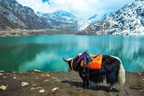 15 Top Things To Do In Sikkim Traveltriangle