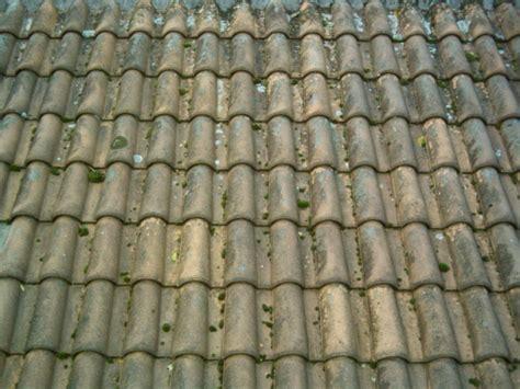 mousse sur toiture tuiles demousage