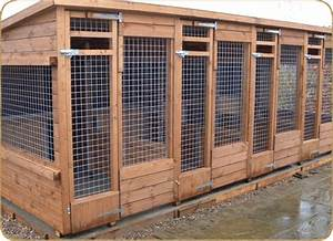 Dog kennel and runs manufactured by timberbuild dog for Dog house and run