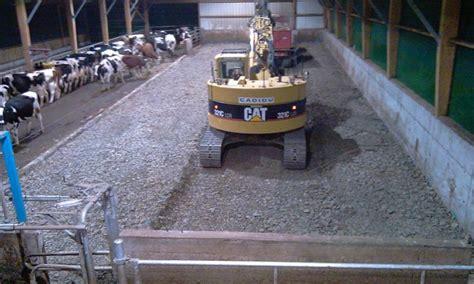 tapis alimentation ovin occasion remplacer une aire paill 233 e par des logettes