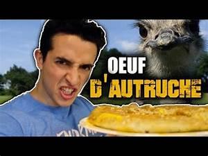 Oeuf D Autruche : defi manger un oeuf d 39 autruche en entier youtube ~ Melissatoandfro.com Idées de Décoration