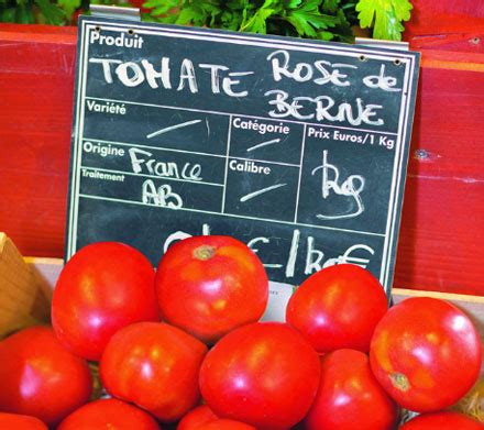 comment cuisiner des tomates vertes du jardin à l 39 assiette les tomates bio conseil jardin