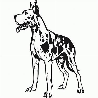 Dane Coloring Pages Drawing Decal Dog Silhouette