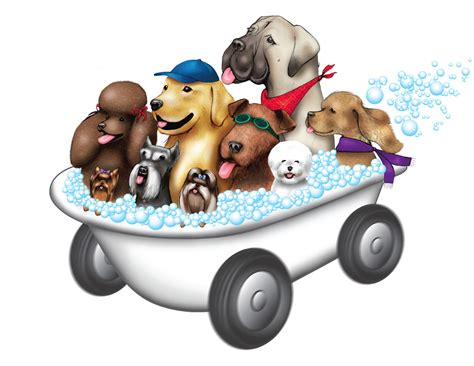 Mobile Groomers by Pepe S Mobile Grooming
