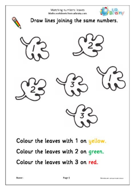 matching numbers leaves counting and matching maths worksheets for early reception age 4 5