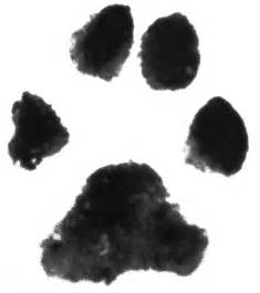 Dog Paw Print with Transparent Background