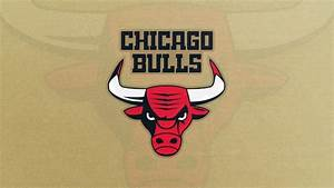 NBA 5 New Team Logos That Could Change The Game Page 4