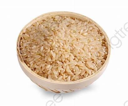 Rice Clipart Brown Transparent Clip