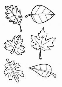 Feuilles D Automne à Imprimer : gabarit feuilles d 39 automne pour tableau collectif ~ Nature-et-papiers.com Idées de Décoration