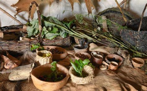 foraging  stonehenge goodbye paleo  neolithic food