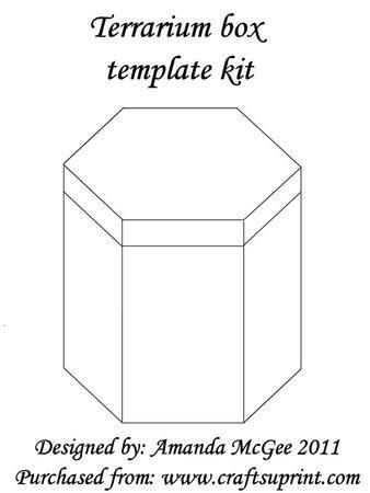 terrarium card box template kit cup