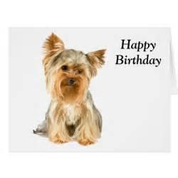 terrier photo custom birthday card zazzle