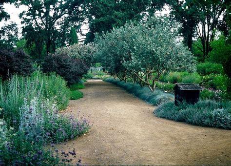 olive garden stapleton 827 best high desert gardening ideas images on