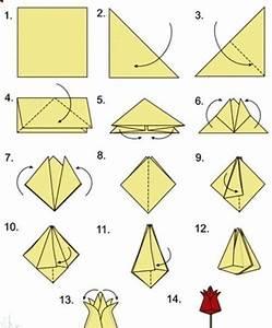 Origami Stern Falten Einfach : origami tulpen falten anleitung dekoking diy bastelideen dekoideen zeichnen lernen ~ Watch28wear.com Haus und Dekorationen
