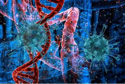 Virus Evolution Novel Viral Believe Researchers Uncovered