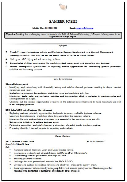 Curriculum Vitae Resume Sles by Professional Curriculum Vitae Resume Template For All