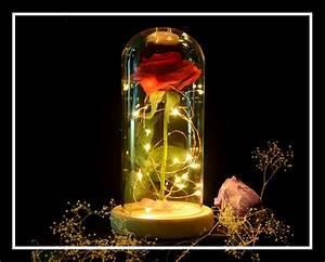 Rose Eternelle Sous Cloche : rose de soie ternelle sous cloche lumineuse en verre ~ Farleysfitness.com Idées de Décoration