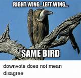 Does left wing mean gay
