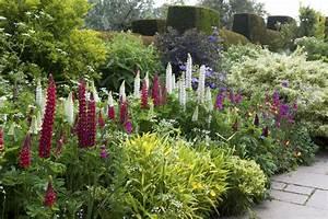 Garden, Border, Ideas, 23, Tips, For, Making, Your, Border, Beautiful