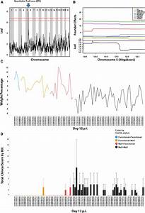 Wnv Qtl   A  Genome Scan Of 90 F1s From Day 12 Weight Loss