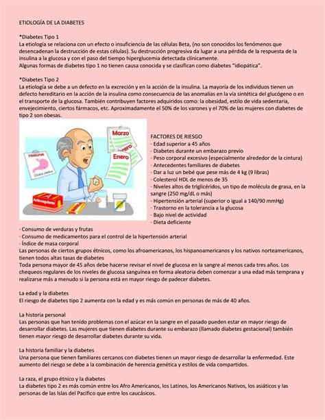etiologia de la diabetes  flor romero issuu