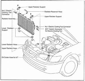 1990 Rodeo Tf Workshop Manual Wiring Diagram