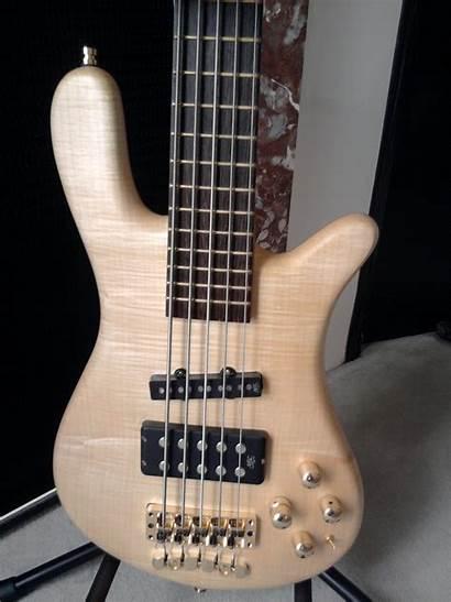 Jazzman Streamer Warwick Oil Natural Bass Than