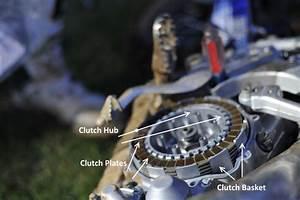 29 Dirt Bike Engine Diagram