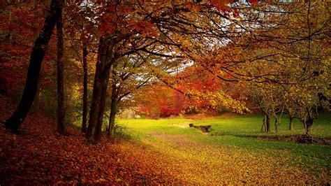 season autumn wallpapers hd wallpapers id