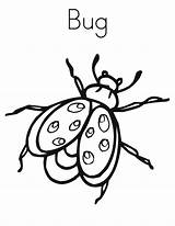 Coloring Bug Pages Printable sketch template