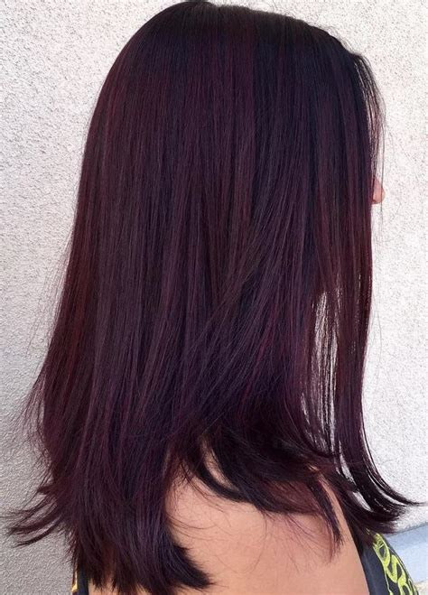 On Hair Color by Plum Brown Hair Dye Hair Styles Inspiration