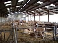 chambre agriculture 65 pente paillée pour 50 vaches allaitantes 65 2 chambre