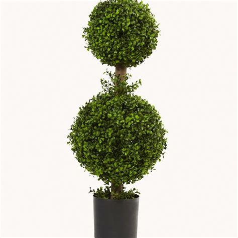 topiary home decorations bringing green designs  modern decor