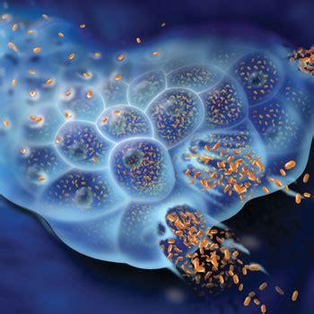 swedish oncolytic virus  healing net foundation