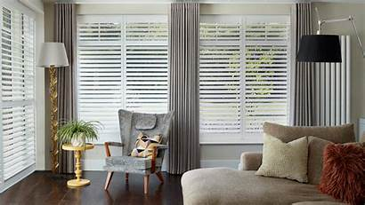 Shutters Shutter Blinds Tropical Appointment Hertfordshire Colour