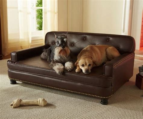 dog friendly sofa fabric how to choose pet friendly fabrics