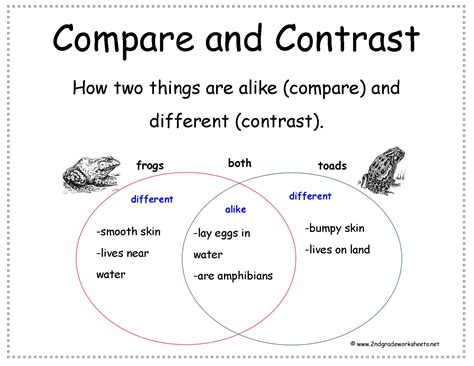 5th grade compare and contrast worksheets worksheets for