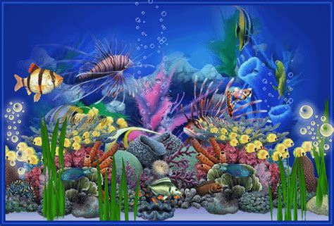 Aquarium Wallpapers 3d Telecharger Gratuit Pour Pc Eganel