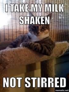 Kitty Cat Memes