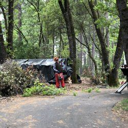 tree services  grass valley yelp