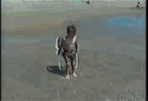 Fail Very Funny GIF - Find & Share on GIPHY