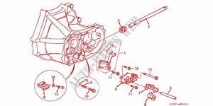 Honda Civic 1998 Parts Manual