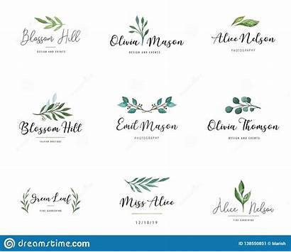 Elegant Logos Monograms Drawn Delicate Elegante Nozze